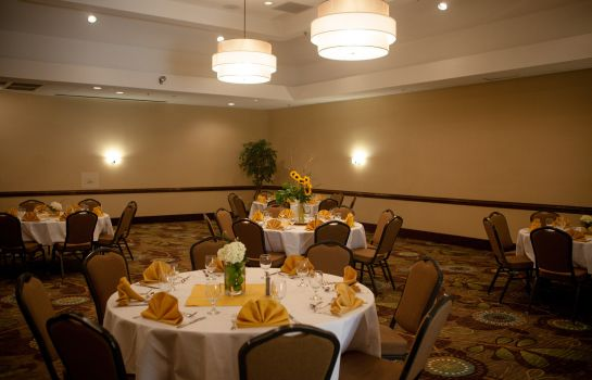 Sala de reuniones Holiday Inn GREENVILLE