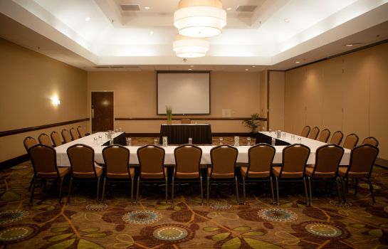 Conference room Holiday Inn GREENVILLE
