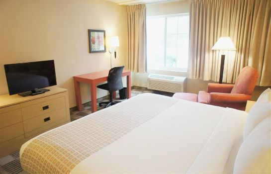 Room La Quinta Inn Ste Elmsford