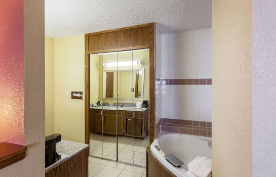 Suite Quality Inn and Suites Lincoln