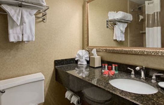 Zimmer RAMADA PLAZA COLUMBUS NORTH HO