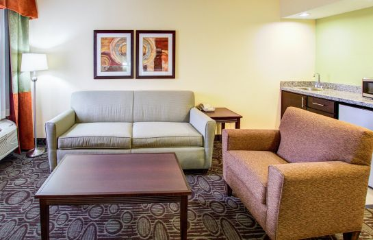 Suite Comfort Inn Chandler - Phoenix South