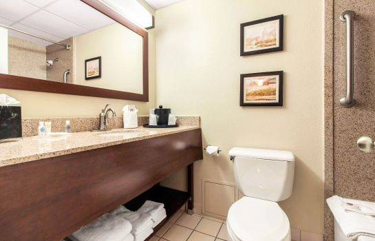 Suite Comfort Inn & Suites Omaha Central
