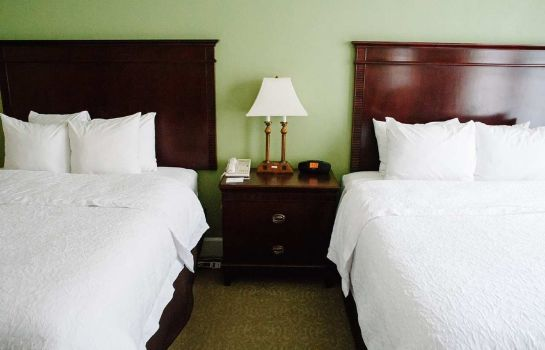 Suite Hampton Inn - Suites Birmingham-Downtown-Tutwiler