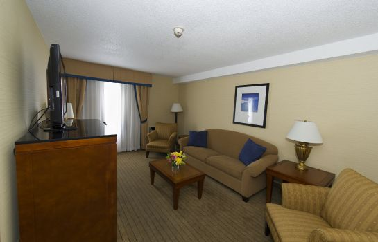 Suite Holiday Inn Express & Suites LONDON DOWNTOWN