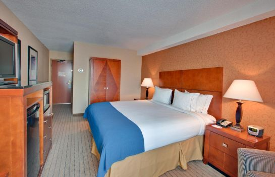 Kamers Holiday Inn Express & Suites LONDON DOWNTOWN