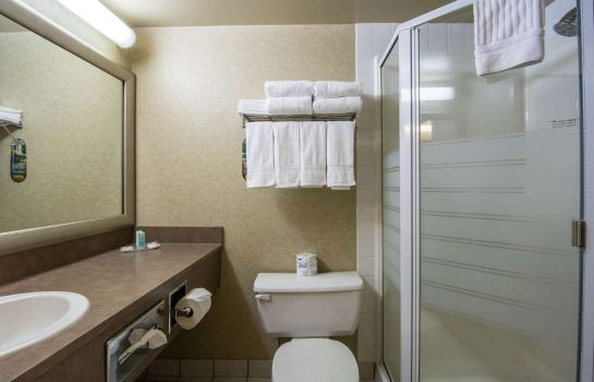 Chambre Comfort Inn & Suites Airport South