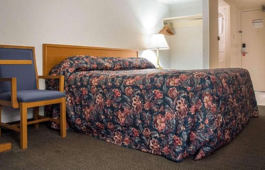 Zimmer Econo Lodge By the Falls