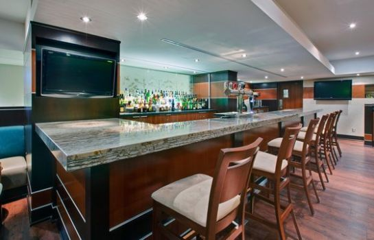 Hotel-Bar Holiday Inn KINGSTON-WATERFRONT