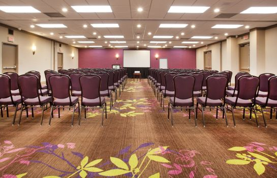 Sala konferencyjna Holiday Inn TORONTO INTERNATIONAL AIRPORT