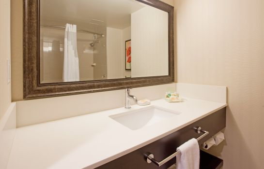 Info Holiday Inn VANCOUVER-CENTRE (BROADWAY)