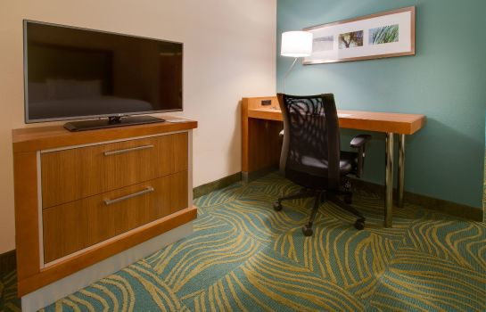Suite SpringHill Suites Orlando Lake Buena Vista South