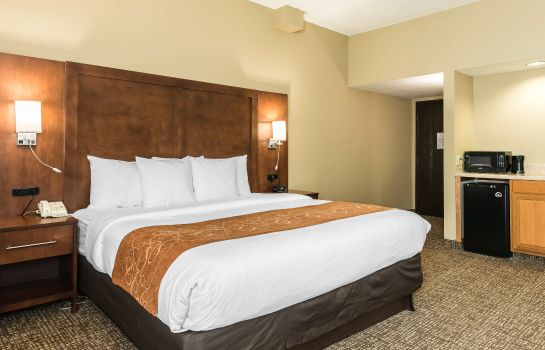 Suite Comfort Suites Baymeadows Near Butler Blvd
