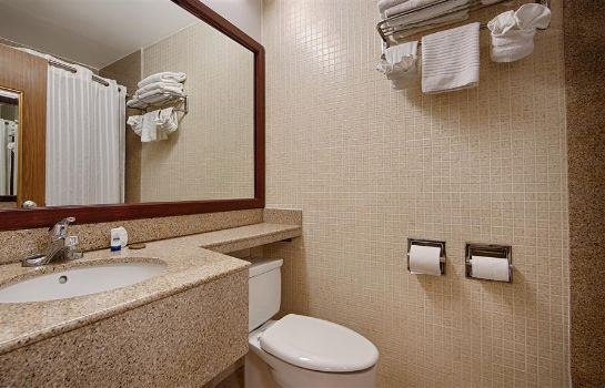 Room BEST WESTERN ORLANDO WEST