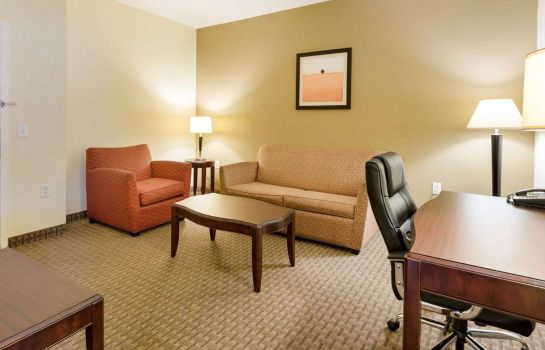 Double room (superior) Quality Inn and Suites