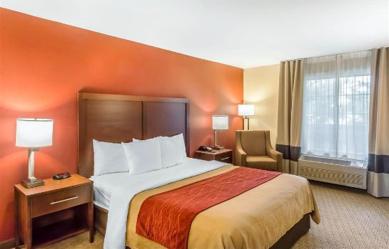 Zimmer Comfort Inn Redwood City