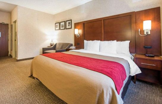 Suite Comfort Inn North - Air Force Academy Area