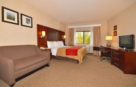 Zimmer Comfort Inn North - Air Force Academy Area