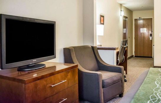 Suite Comfort Inn Fort Myers Northeast