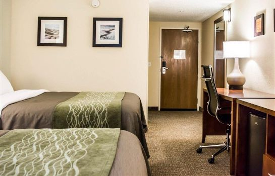 Room Comfort Inn Fort Myers Northeast