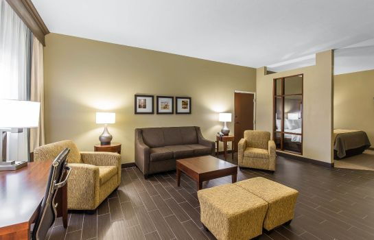 Suite Comfort Inn & Executive Suites