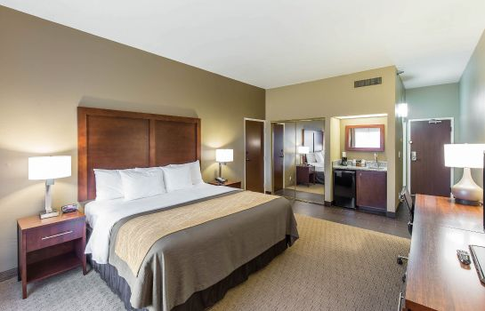 Zimmer Comfort Inn & Executive Suites