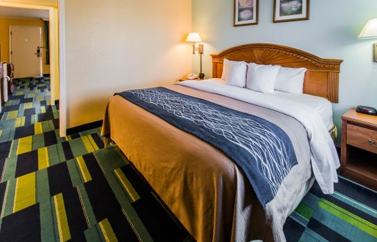Room Comfort Inn & Suites Port Canaveral Area