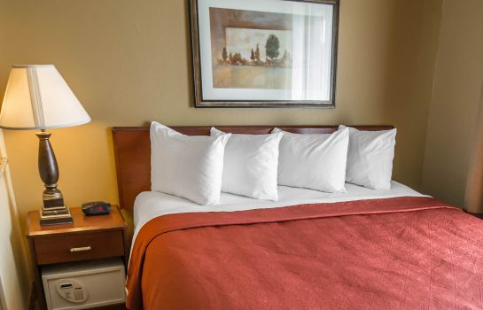 Zimmer Quality Inn & Suites South