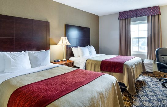 Room Comfort Inn Rockland - Boston