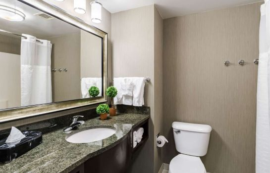 Zimmer Comfort Inn & Suites Logan International Airport