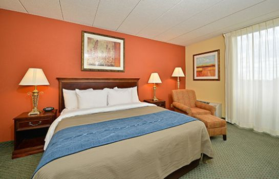Zimmer BEST WESTERN NORTH SHORE HOTEL