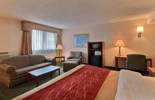 Suite Comfort Inn Farmington Hills