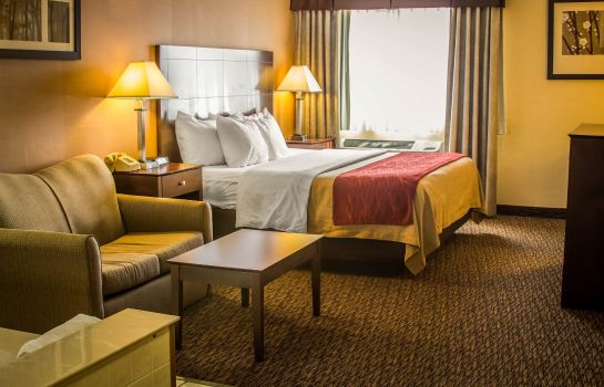 Suite Comfort Inn Port Huron