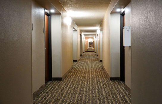 Information Comfort Inn Executive Park