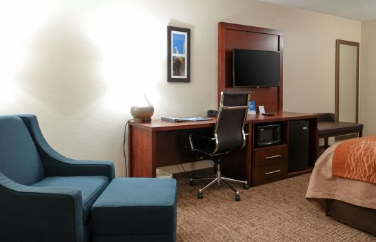 Room Comfort Inn Executive Park
