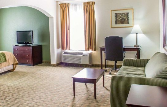 Suite Comfort Inn Winterville