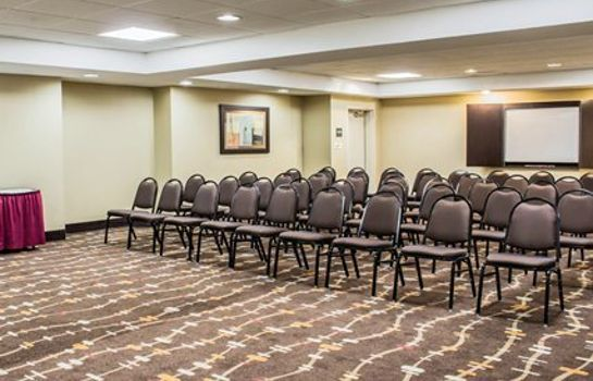 Conference room Comfort Inn University Durham - Chapel Hill
