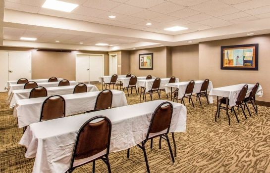 Conference room Comfort Inn University Durham - Chapel H Comfort Inn University Durham - Chapel H