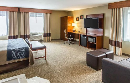 Suite Comfort Inn Edgewater on Hudson River
