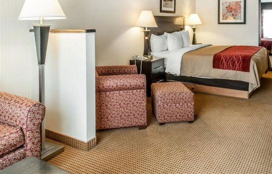 Suite Quality Inn and Suites Farmington