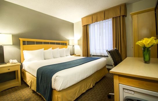 Zimmer Quality Inn Convention Center