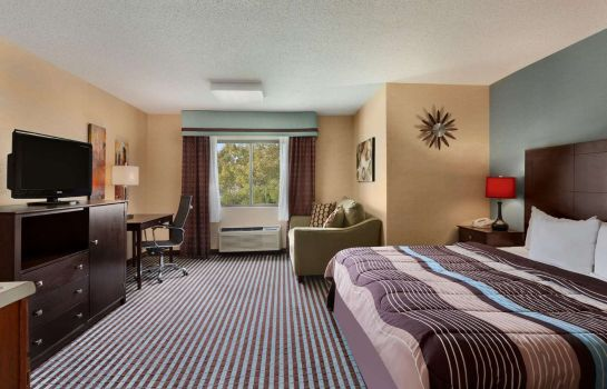 Suite DAYS INN ALBANY AIRPORT