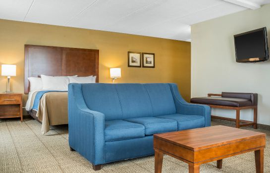Suite Comfort Inn The Pointe