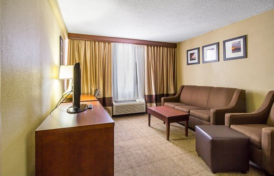 Room Comfort Inn Downtown