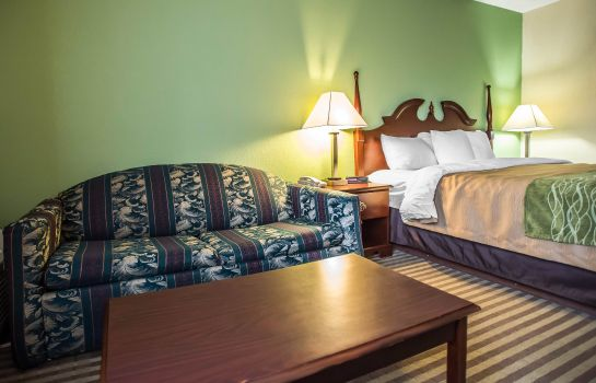 Chambre Quality Inn Mill Hall - Lamar