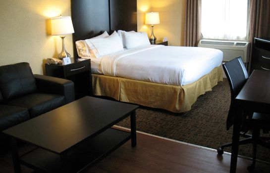 Suite Holiday Inn Express PHILADELPHIA - PENNS LANDING