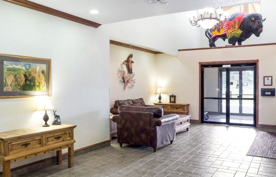 Hall Comfort Inn and Suites Custer