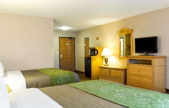 Room Comfort Inn & Suites near Black Hills Parks and Forests