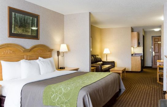 Zimmer Comfort Inn and Suites Custer