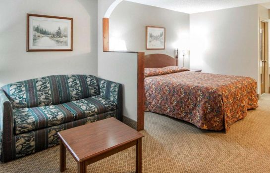 Suite Econo Lodge Inn and Suites East